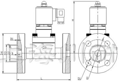高压法兰连接电磁阀结构图